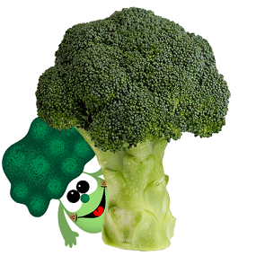 Broccoli fight