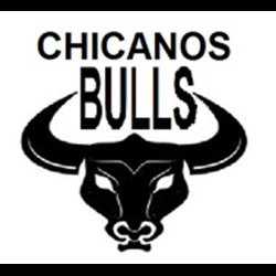 No bulls eye for Chicago Bulls